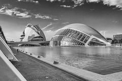 Spain, Valencia, Ciudad de las Artes y las Ciencias (Only photoshoot, don't be afraid) Tags: spain valencia ciudaddelasartesylasciencias modernarchitecture blackandwhite santiagocalatrava