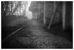 Gog Hill (Father Pie) Tags: lensbaby blur edge50 elland goghill mist fog mono blackwhite