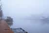 a very foggy morning in Leeuwarden (pierre bakker) Tags: leeuwarden friesland netherlands nl fryslân