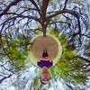 Grand Old Willow (neilcreek) Tags: tinyplanet littleplanet 360 people forest photosphere woods trees theta360 vr tree hiking wilderness wood group hike outdoors instanature woodland walk goodtimes memories happiness lifein360 trunk leaves willow branches canopy