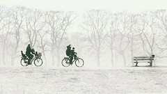 (andzwe) Tags: dalfsen dijk dike fietsers ouders kinderen zitje vader moeder father mother children bikes netherlands nederland nederlandslandschap dutch overijssel trees bomen mist fog kou cold snow sneeuw crow kraai bench bank