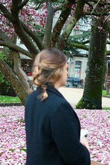 another view (albavv46) Tags: girl blonde friend march woman desenfoque flowers tree pontevedra day canonphotography canon amateur nature naturephotography pink rosa galicia chica portraitphorography
