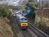 D832 (Geoff Griffiths Doncaster) Tags: d832 duffield ecclesbourne valley railway warship onslaught evr