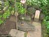 img_0827 (abhijitnavale) Tags: temple marathi maharashtra shankar shiv lake waterfall trees