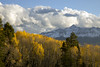 I'll camp here (Jeff Mitton) Tags: wilsonpeak sanjuanmountains colorado mountains wilderness scenic landscape fall autumn fallcolors autumncolors foliage aspen tremblingaspen quakingaspen earthnaturelife wondersofnature