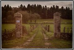 06-A l'abandon (dangui89) Tags: paysage nature portail prairie herbe gazon cloture forêt arbres briques muret chemin france bourgogne yonne89 guillierdanielphotofr