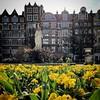 Golden Square, Soho (Flamenco Sun) Tags: sun square golden flowers spring soho london