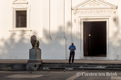 Leon lion and prey? (10b travelling / Carsten ten Brink) Tags: carstentenbrink 10b 10btravelling 2018 americas asuncion basilicadelaasuncion centralamerica iptcbasic latinamerica latinoamerica leon león nica nicaragua nicaraguan parquecentral basilica catedral cathedral centroamerica church cmtb colours tenbrink