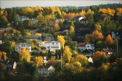 (*Kicki*) Tags: autumn colours colors nacka sweden stockholm trees houses viewfromhome