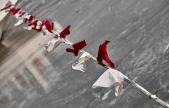 rot/weiß ~ red/white (Froschkönig Photos) Tags: rotweis ~ redwhite rot weis red white fahne flagge seil tau tangermünde hafen eis flags grenze border frontier