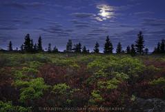 Fall Moonset (martinradigan) Tags: dollysods dollysodswilderness fall canaanvalley moon martinradigan fallcolor landscape