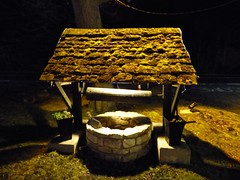 The Wishing Well (nannyjean35) Tags: wishing well tree moss handle grass night bricks