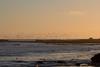 IMG_8664 (armadil) Tags: mavericks beach beaches californiabeaches bird birds sunset flying flocks