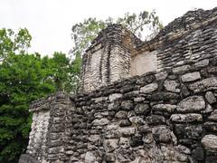 P1041128-1 (zrim) Tags: dzibanche mexico 2018 maya mayan jungle archeology pyramids