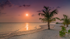 A9900826_s (AndiP66) Tags: strand beach sonne sun sonnenuntergang sunset wolken clouds evening abend adaaran select meedhupparu raa atoll insel island malediven maldives indischerozean indianocean februar february 2018 sony alpha sonyalpha 99markii 99ii 99m2 a99ii ilca99m2 slta99ii sigma sigma24105mmf4dghsmart sigma24105mm 24105mm art amount andreaspeters