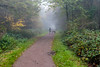 A walk in the forest (PhredKH) Tags: canonphotography eppingforest fog forest fredkh grass mist photosbyphredkh phredkh splendid trees outdoor outdoorphotography sky kitlens pathway essex road tree wood trail