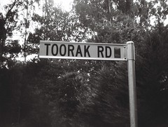 Sign - Toorak Road (Matthew Paul Argall) Tags: jcpenneyelectronicstrobepocketcamera 110 110film subminiaturefilm lomographyfilm blackandwhite blackandwhitefilm fixedfocus focusfree sign roadsign streetsign 100speedfilm 100isofilm