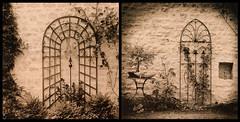 Garden (Antonio's darkroom) Tags: hasselblad trix kodak pyrocathd chamois toning catechol sepia se1 viradon moersch normandy garden stefan foma 542