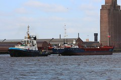 CEG Universe (das boot 160) Tags: ceguniverse ships sea ship river rivermersey port docks docking dock boats boat mersey merseyshipping maritime cammelllairds