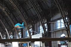 ¡Al ataque! (Lady Smirnoff) Tags: tiburon shark retiro tren train etacion station