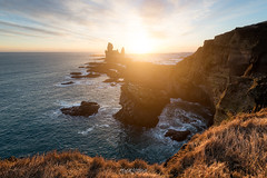 Londrangar (Rouz 29) Tags: hiver iceland islande snaefellsnes niceland winter goldenhour heuredoree londrangar vesturland sunset coucherdesoleil light lumiere sea mer cliff falaise nature natural naturel nikon nikkor beauty beauté sirui marumi erwanleroux seascape landscape paysage sun soleil
