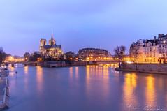 Notre-Dame de Paris (Yohann Hamonic) Tags: yohannhamonic yhamophotos paris notre dame de light lumière lumiere pose longue long exposure blue hour heure bleue night nuit