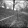 wire fence, hillside, angular forms, diagonal movements, Biltmore Estate, Asheville, NC, Ricohflex Dia M, Arista.Edu 200, Ilford Ilfosol 3, 3.8.18 (steve aimone) Tags: fence fencing wirefence angular diagonal hillside pastoral biltmoreestate asheville northcarolina ricoh ricohflex ricohflexdiam tlr twinlensreflex aristaedu200 ilfordilfosol3developer 120 film 120film mediumformat 6x6 blackandwhite monochrome monochromatic