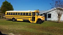 1997-1999 Thomas/International 3800 (abear320) Tags: school bus thomas international 3800 nassau district schools florida