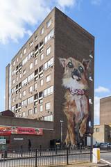 Chrispy Chihuahua (jamesdevansphoto) Tags: chihuahua art boe chrispstreet d750 dog irony london mural nikon nikond750 poplar streetart urbanart