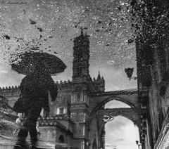 Riflesso cattedrale (alessandrochiolo) Tags: sicilia siciliabedda street streetphoto sicily sky sea streetphotography streetphotografy biancoenero bw fujifilm fuji palermo cattedrale cattedralepalermo