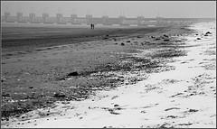 Plage à Kamperland et barrage du plan Delta, Zeelande, Nederland (claude lina) Tags: claudelina nederland hollande paysbas zeelande zeeland merdunord noordzee plage dune beach debanjaard kamperland noordbeveland plandelta oosterscheldekering barrage barragedelescautoriental