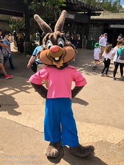 Brer Rabbit (Rare)