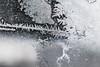 DSC_7817 (harynjk23) Tags: frostwork winter freez jégvirág tél macro nikon d5300 extension tubes