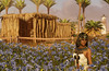 My character dressed as Cleopatra enjoys a beautiful field of blue flowers in a threshing area in Assassin's Creed Origins Discovery Tour (mharrsch) Tags: egypt ancient ptolemaicperiod flower blue blueflowers threshing cleopatra 1stcenturybce ubisoft assassinscreedorigins virtualworld discoverytour mharrsch game videogame