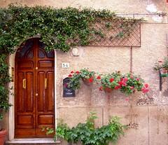 MASSA MARITTIMA - (Grosseto) (cannuccia) Tags: massamarittima toscana porte doors facciate rampicanti muri numeri fiori gerani fabuleuse