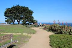 IMG_7598 (mudsharkalex) Tags: california pacificgrove pacificgroveca
