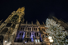 Exactly what I signed up for (Melissa Maples) Tags: münchen munich deutschland germany europe nikon d3300 ニコン 尼康 sigma hsm 1020mm f456 1020mmf456 winter marienplatz night christmasmarket holidays christmas christkindlmarkt market weihnachtsmarkt neuesrathaus townhall rathaus lights christmastree tree