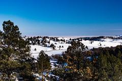 Custer Park 20180223-0024 (Photos By Bob Van) Tags: blackhills csp custerstatepark landscape snow southdakota winter custer unitedstates us