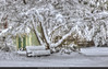 Shade tree (Pearce Levrais Photography) Tags: yard nor'easter landscape markii 7d canon hdr tree bench snow