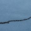 au dessus de la rivière blanchie (mimu_13) Tags: europe no nor norway troms tromsfylke tromso format givre glace square samsungnx nx500 kvaløya continentsetpays norvège tromsø carré météo météorologie