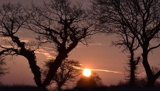 Die Sonne geht auf in Bergenhusen, Stapelholm (5)