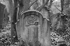 The grave of Eliza James (IanAWood) Tags: abneyparkcemetery bringoutyourdead carlzeissplanart1450mmzf2 cemeteryclub citiesofthedead graveyards headstonehunting lbofhackney london londonsdead londonsmagnificentsevenvictoriancemeteries londonsvictoriancemeteries manualfocus necropolis nikond810 primelens stokenewington walkingwithmynikon