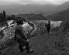 Passage entre les rizières (Guillaume_BRIAND) Tags: nikon d750 2470 tamron sapa tavan vietnam rizières noir blanc black white nb bw