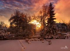 Goldener Morgen (Schneeglöckchen-Photographie) Tags: gold morgen sonnenaufgang morning sunset sunrise