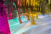 20180304-147 (sulamith.sallmann) Tags: landschaft wetter analogeffekt blur bunt bäume colorful effect effects effekt filter folie folientechnik forest landscape miriquidi natur nature schnee snow trees unscharf wald weather winter sulamithsallmann