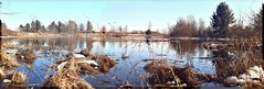 Un-named small lake (panoramic) (Steve InMichigan) Tags: panoramic osawa2880mmf3545 fotodioxomeoslensadapter lakescape lake winterscene canoneosrebelt5i