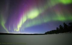 aurora 14.3.2018 (Hotel Korpikartano) Tags: auroraborealis aurora revontulet northernlights laplandfinland inarilapland finland
