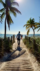 amazing Key West (p__p) Tags: approved keywest florida key west america south island holiday honeymoon summertime romantic palms seaside shore sand summer vacation