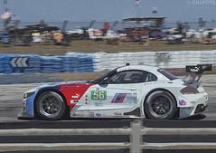 BMW Z4 56 436 (Gillfoto) Tags: bmwz4 sebring endurance motorracing florida