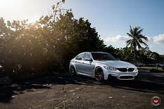 BMW M3 - Vossen Forged - Series 17 - S17-01 - © Vossen Wheels 2018 -1006 (VossenWheels) Tags: 335i 335iaftermarketforgedwheels 335iaftermarketwheels 335iforgedwheels 335iwheels bmw bmw3series bmw3seriesaftermarketforgedwheels bmw3seriesaftermarketwheels bmw3seriesforgedwheels bmw3serieswheels bmw335i bmw335iaftermarketforgedwheels bmw335iaftermarketwheels bmw335iforgedwheels bmw335iwheels bmwaftermarketforgedwheels bmwaftermarketwheels bmwforgedwheels bmwm3 bmwm3aftermarketforgedwheels bmwm3aftermarketwheels bmwm3forgedwheels bmwm3wheels bmwwheels forgedwheels m3 m3aftermarketforgedwheels m3aftermarketwheels m3forgedwheels m3wheels s1701 series17 vossenforged vossenforgedwheels vossenwheels ©vossenwheels2017m ©vossenwheels2018